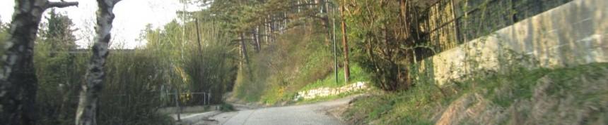 portal riedenthal